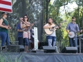Gold Heart at Bloomin' Bluegrass Festival 2016. Photo by Nathaniel Dalzell.